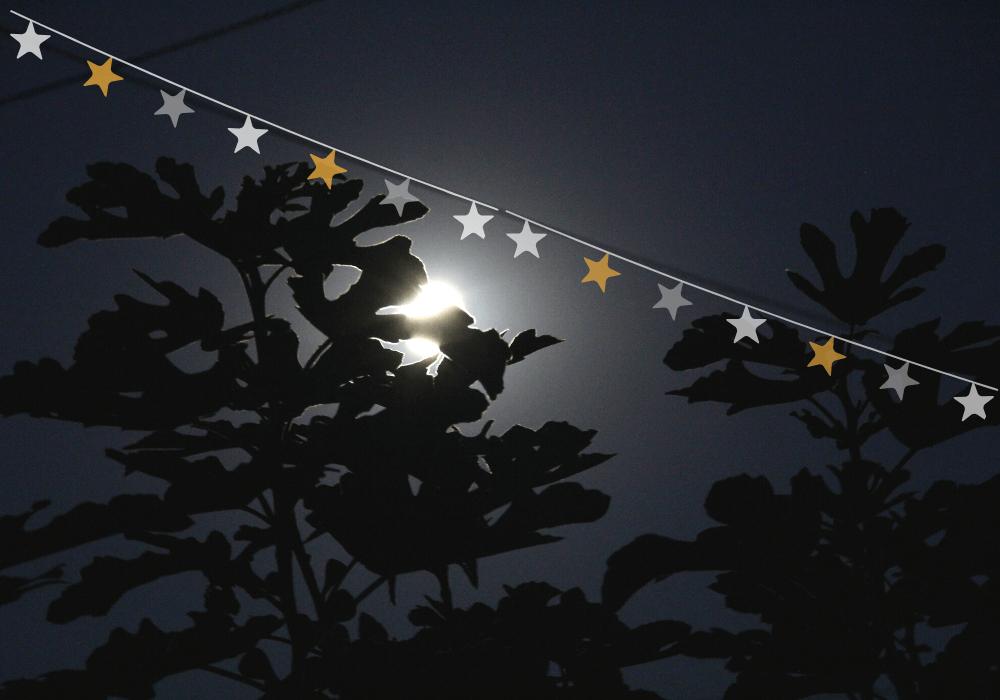 mesec i zvezde anine price